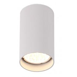 Lubinis šviestuvas PET ROUND NEW baltas - 1 - 15,11€