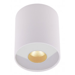 Plafonas PLAZMA baltas IP54 - 1 - 72,09€