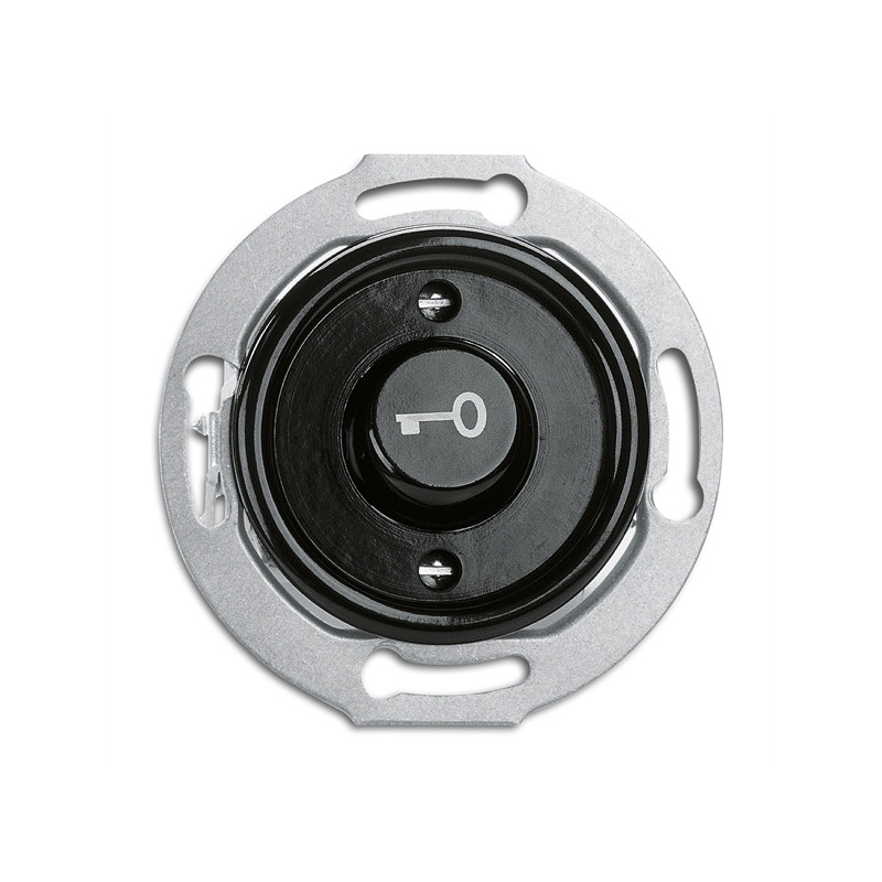 THPG duroplasto mygtukas spynai